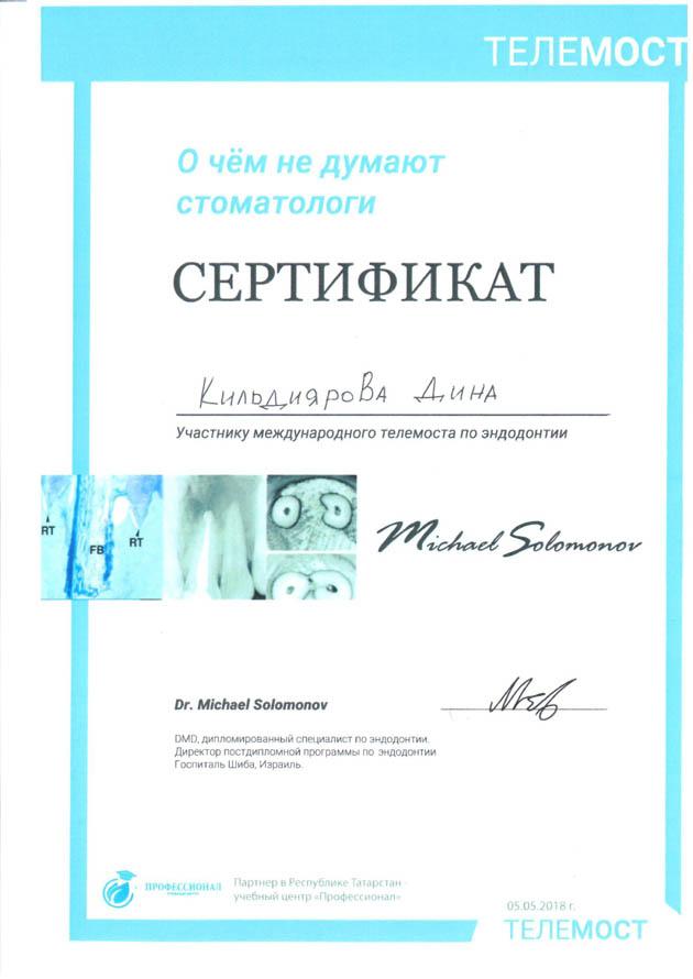 kildijarova_cert1